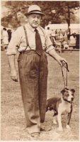 history staffordshire bull terrier124