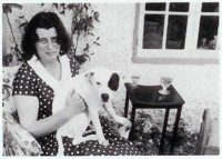 history staffordshire bull terrier19