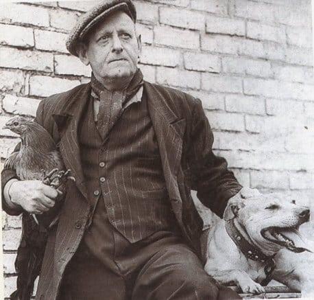 Historie Stafordšírského Bulteriéra Joe Mallen
