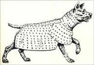 spanish-dogs3